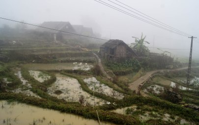 View over the flooded rice fields