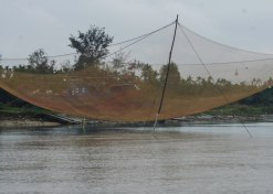 They can even catch a boat with the nets