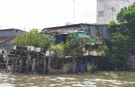 A little back garden over the Mekong