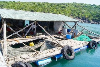 Local fish farm