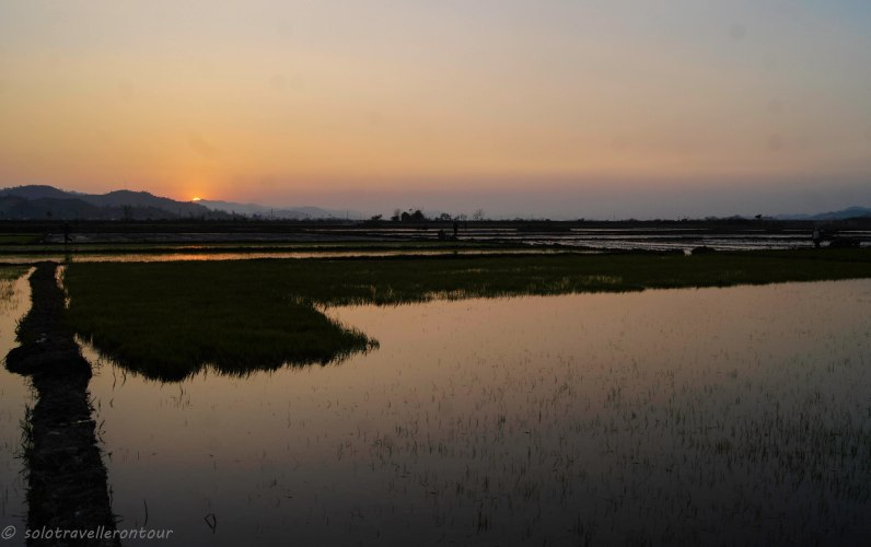 A great sunset over some rice fields
