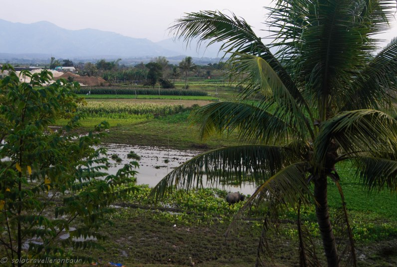 View of rural Vietnam at its best