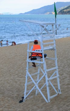 Not sure this is the life guard