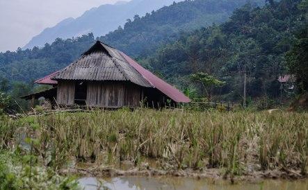 Area near the homestay