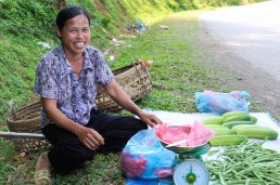 Getting the freshest cucumber ever on the road side
