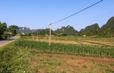 The road towards Ban Gioc