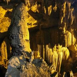 The silver tree inside Động Ngườm Ngao cave