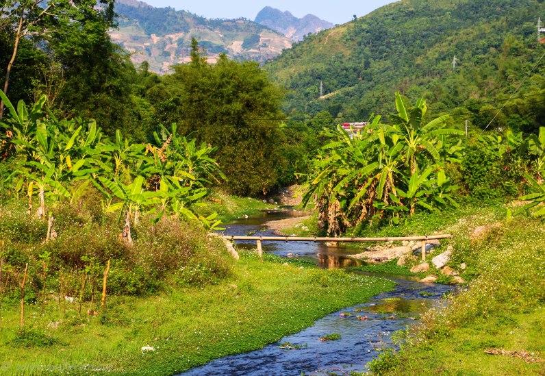 Little stream and bridge in Yen Minh