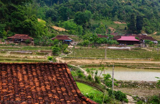 Red roofs and green fields