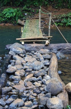 Little bamboo bridge