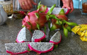 Fresh dragon fruits. So tasty