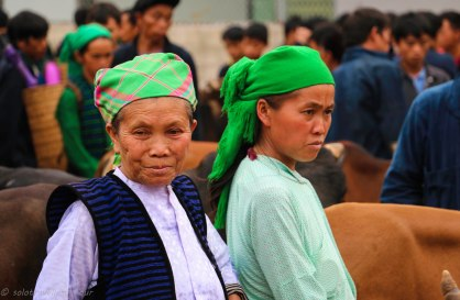 Two women trying to sell some cattle