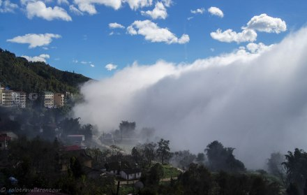 Heavy fog can reduce the visibility to nearly 0%