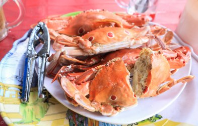 Freshly prepared crab - 1kg of it