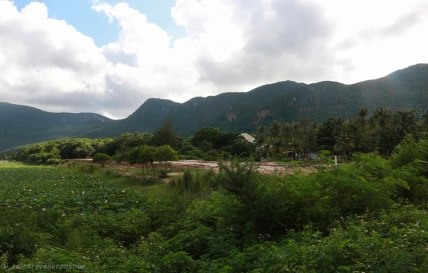 Some of the hills and jungle on Con Son island