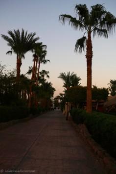 The boulevard along the beach