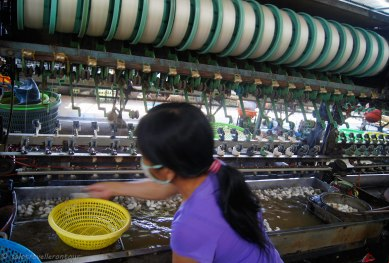 The machines used to make silk from the cocoons