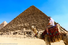 The Camel was certainly happy to arrive at the pyramid