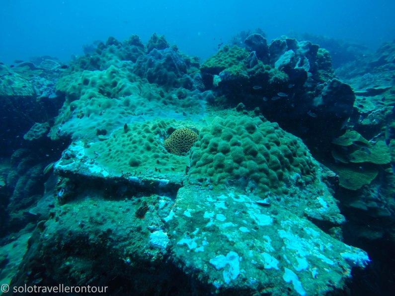 Welcome to PQ Underwater
