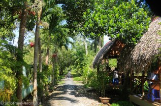 The road leading to the homestay