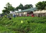 Locals planting something....
