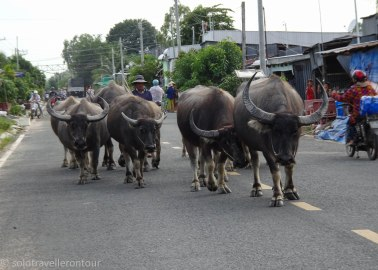 Slow traffic ahead....