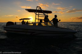 We were not alone enjoying the sight of dolphins and the sunset